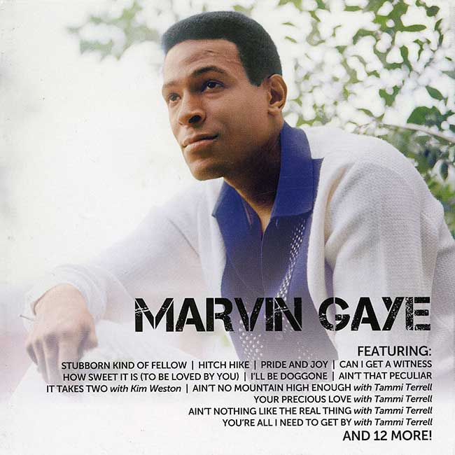 Marvin_Gaye Icon 2.jpg